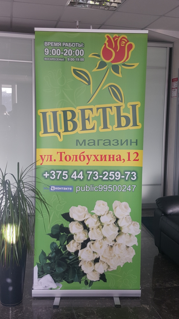Sharq Roll-Up 85 х 200 см (Шарк Ролл-Ап)  reklama-on.by